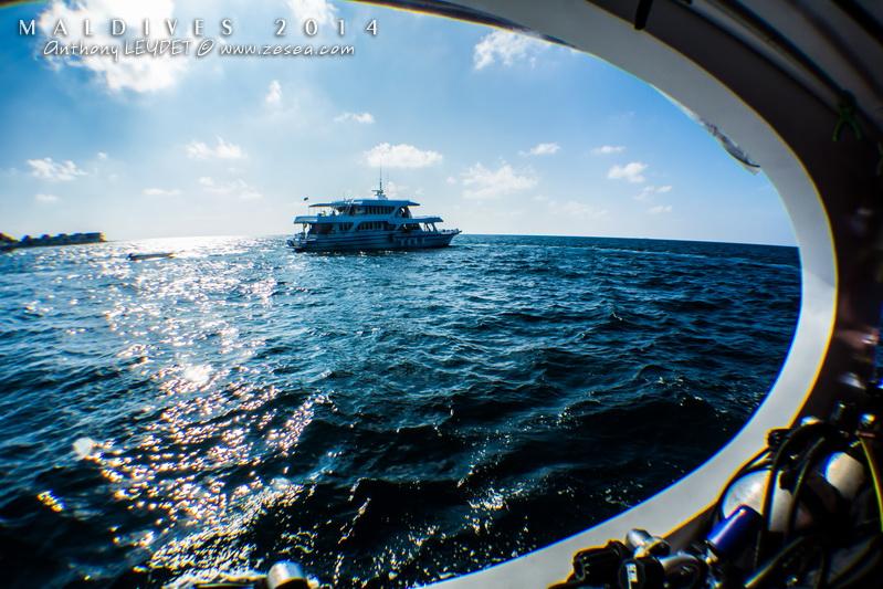 Voyages plongée