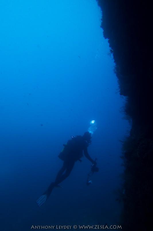 plongée du bord à Callelongue