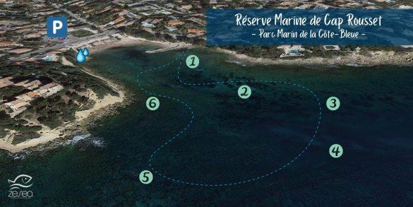 Snorkeling à Cap Rousset sur la Côte Bleue