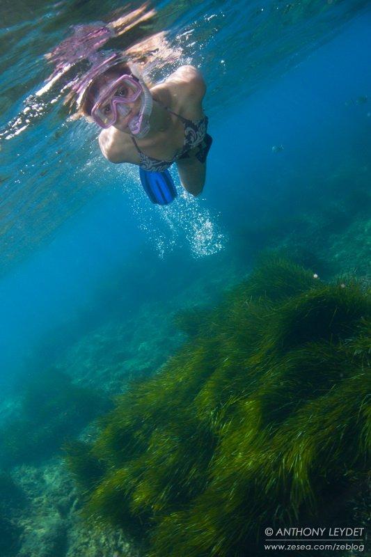 Le plaisir de la plongée libre...