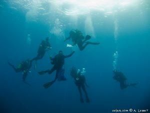 Les plongeurs du GEM