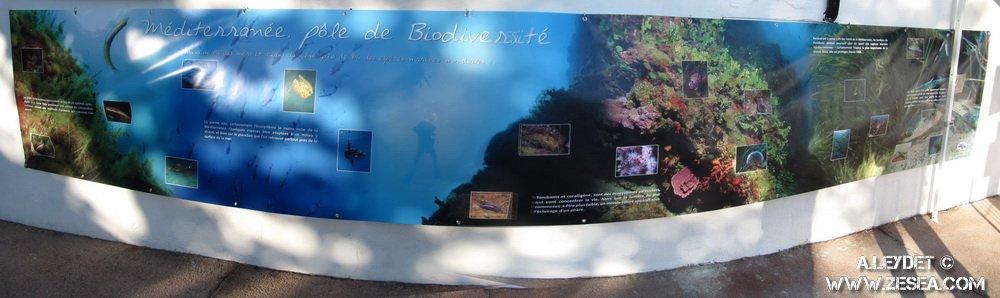 Bâche présentation des écosystèmes de Méditerranée