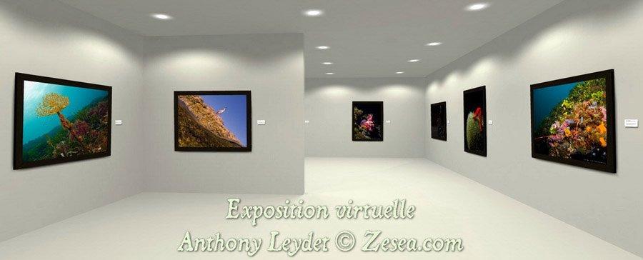 Exposition virtuelle Anthony Leydet