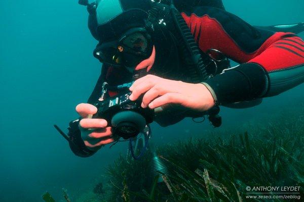 Comment réussir vos photos sous-marines ?