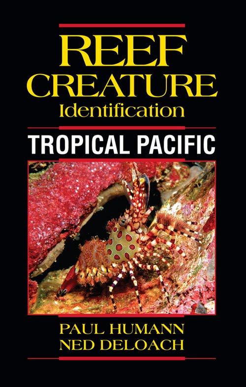 reef-creature-ID-book