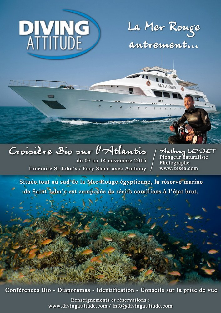 croisiere-bio-2015-affiche