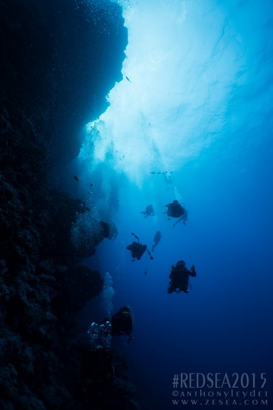 récifs de St-John