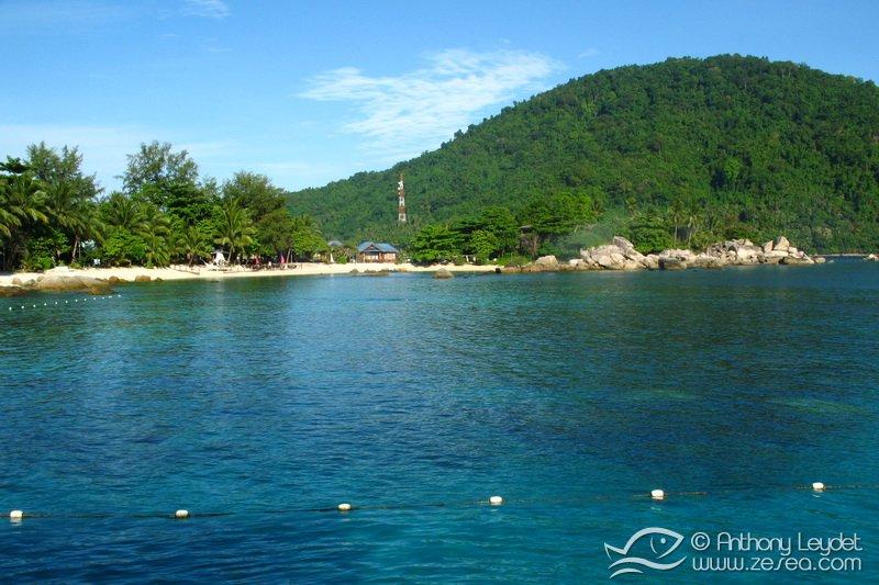 La plage du Coral View , excellente pour le snorkeling !