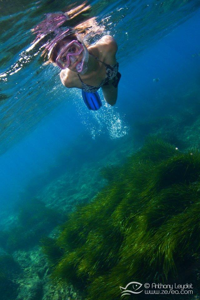 snorkeling-posidonia