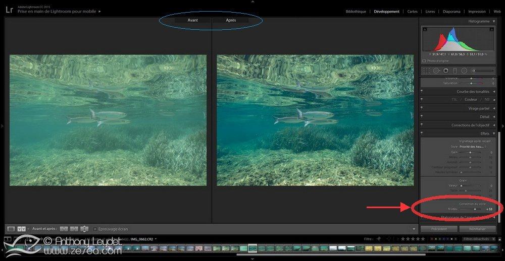 Enlever le voile des photos sous-marines