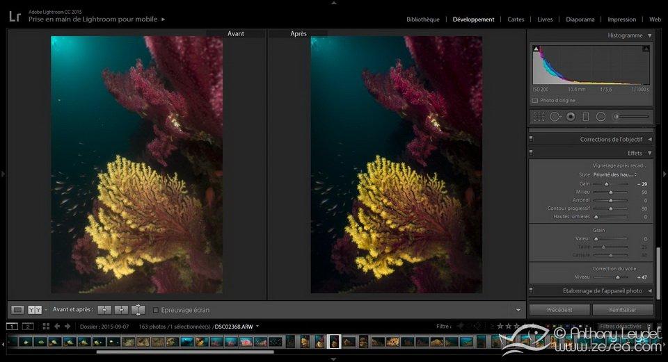 utiliser Lightroom pour ses photos sous-marines