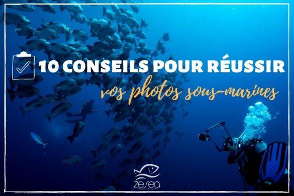 10 astuces pour réussir vos photos sous-marines