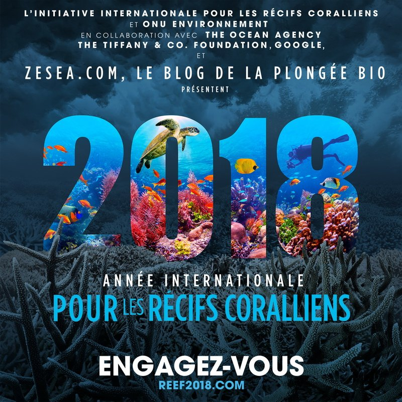2018, année internationale pour les récifs coralliens