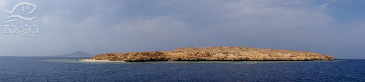 Rocky island et Zabargad