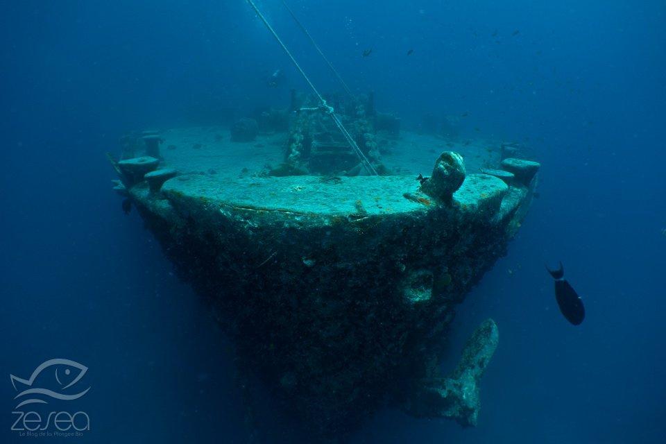 La proue du Thistlegorm en Mer Rouge