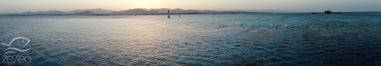 Plongée en Mer Rouge à Tiran