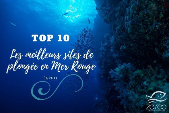 Top 10 des meilleurs sites de plongée en Mer Rouge - Egypte