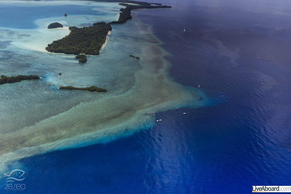 Palau Blue corner and Blue hole - World heritage site -