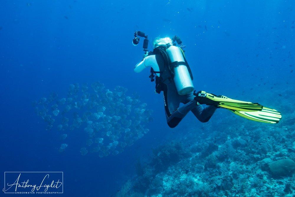 La flottabilité du photographe sous-marin est importante