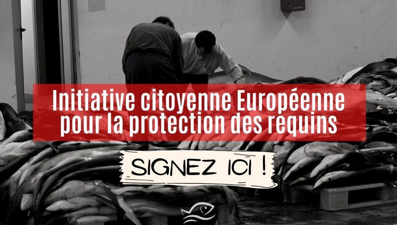 Initiative citoyenne européenne pour la protection des requins