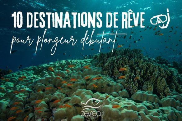 10 destinations de plongée de rêve pour plongeur débutant